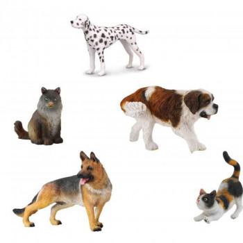 Kočky a psy – set 5ks