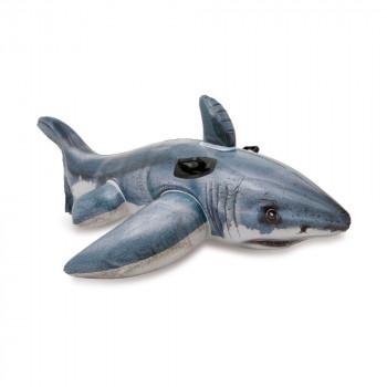 Plavidlo Žralok 173cm