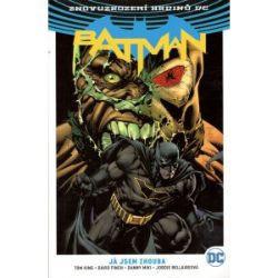 Batman 3: Já jsem zhouba