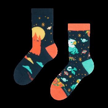 Dětské veselé ponožky Harry Potter ™ Zázračné bytosti Rokfor
