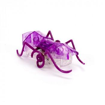 HEXBUG Micro Ant - fialový