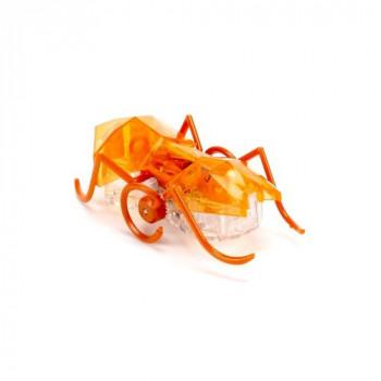HEXBUG Micro Ant - oranžový